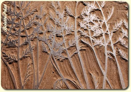 linocarottes