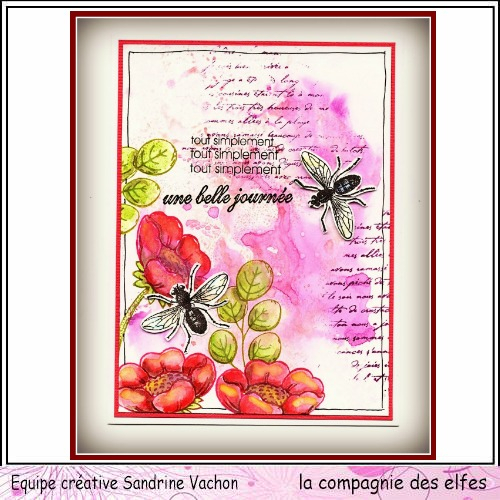 Carte insecte UNE BELLE JOURNEE DT LCDE (1)