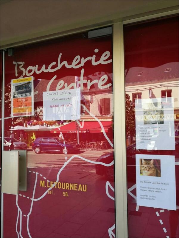 affiches chats perdus vitrine boucherie 082018