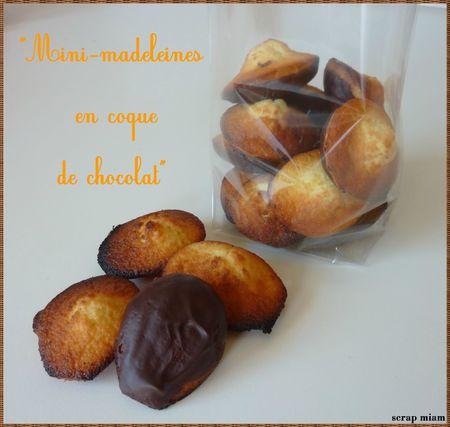 mini madeleines en coque de chocolat