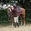 équitation d'extérieur - parcours en terrain varié (10)