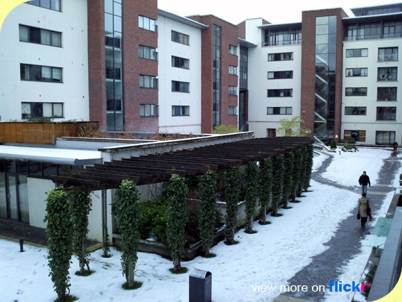 IFSC_snow_home