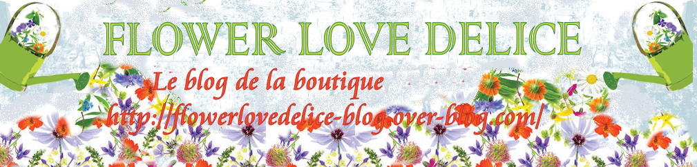 BLOG_BOUTIQUE