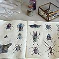Insectes cosmiques -tuto dessin-