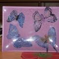 vide poche papillons