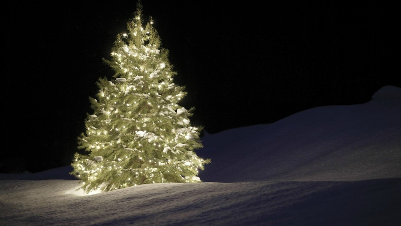 christmas-tree-garland-snow-night-1920x1080