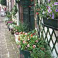 Collection de portes fleuries
