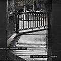 parallèles_02b