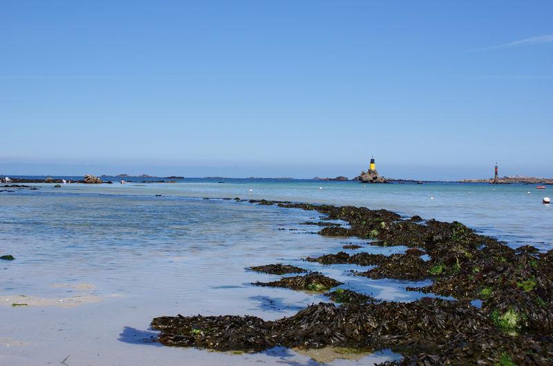 La côte sauvage dans le finistère, par marée basse (juillet 2008)