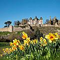 La château cerné par la fine fleur des gilets jaunes