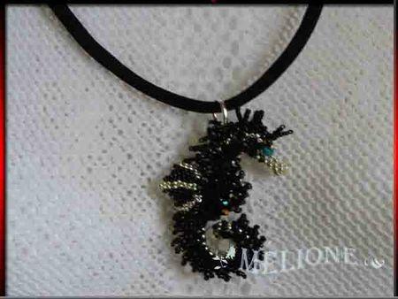 hippocampe noir