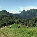 Mont pelat 1543 m. – aillon-le-jeune – bauges
