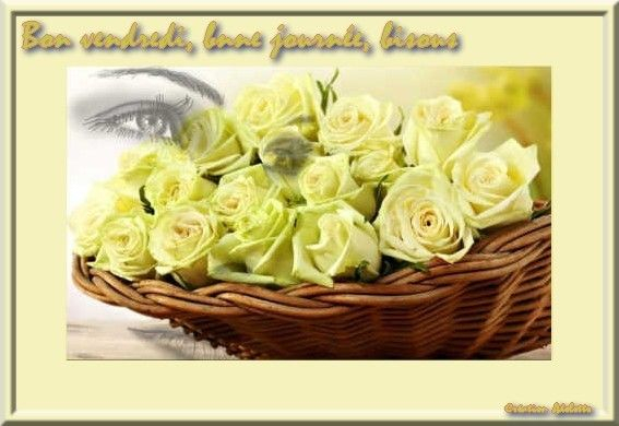 5 b v femme roses jaunesBPat19