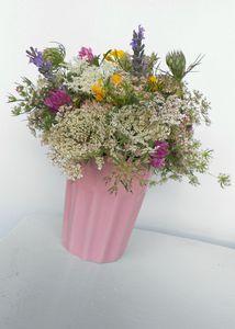 fleurs des champs (4)