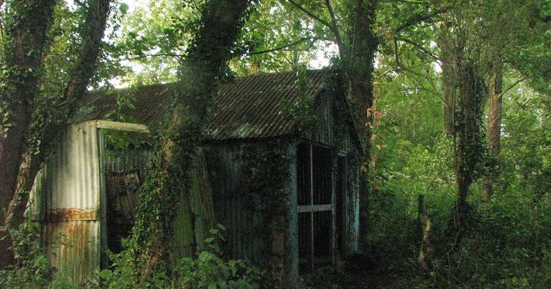 cabane-abandonnee
