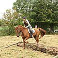 équitation de pleine nature - rallye équestre (175)