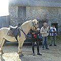 balade à cheval médiévale - Abbaye de Hambye (4)