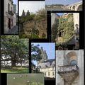 Photos #1