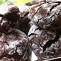 Biscuits craquelés au chocolat (sans beurre, sans plv) - à partir de 18 mois