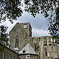 balade à cheval médiévale - Abbaye de Hambye (167)