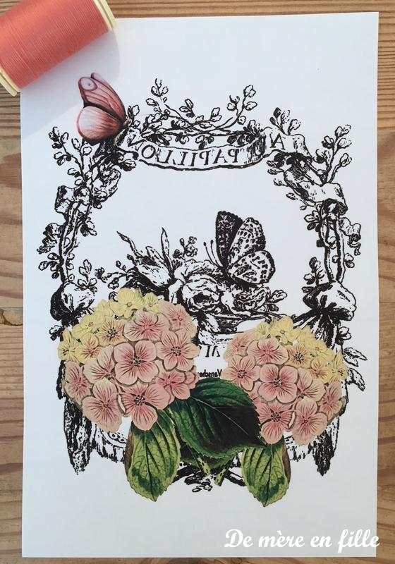 hortensias roses et papillon