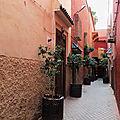 Se perdre dans les ruelles de marrakech ...