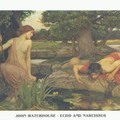 waterhouse-john-william-echo-und-narzissus-1004771