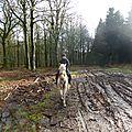 Balade à cheval dans la forêt P1080185