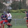 Chevreuse-RCP15-P06