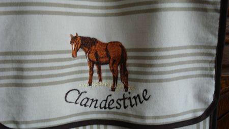 Clandestine1