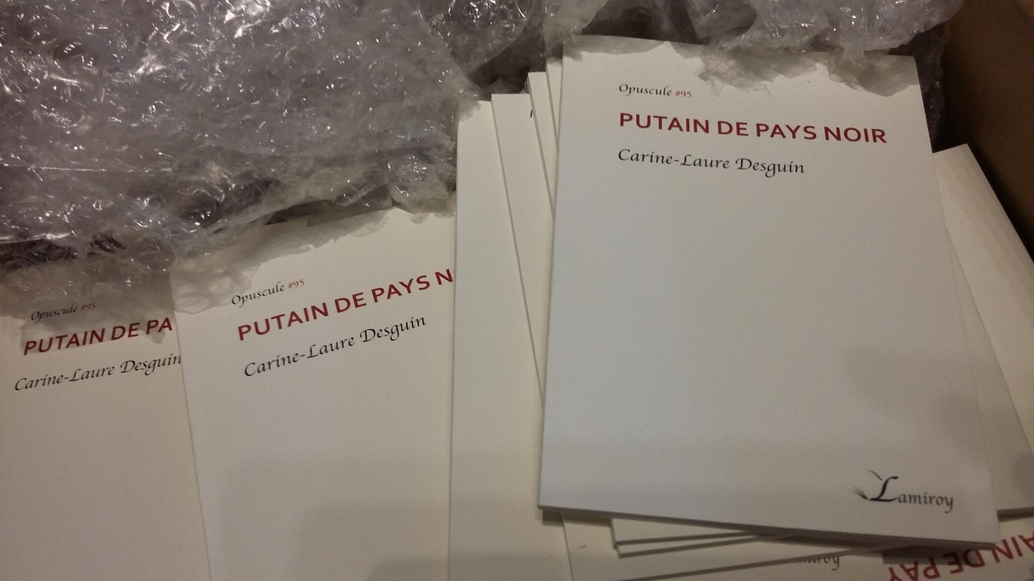 PUTAIN DE PAYS NOIR (EDITIONS LAMIROY), balade littéraire organisée par Guy Delhasse