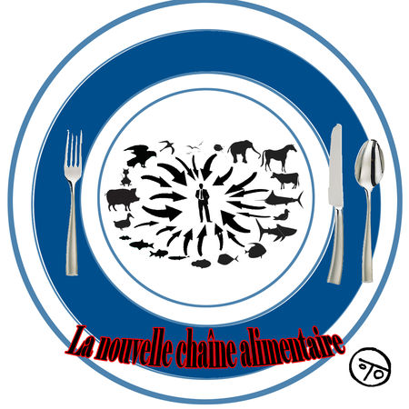 La_nouvelle_cha_ne_alimentaire