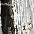0052 Cabane à Arceau blog