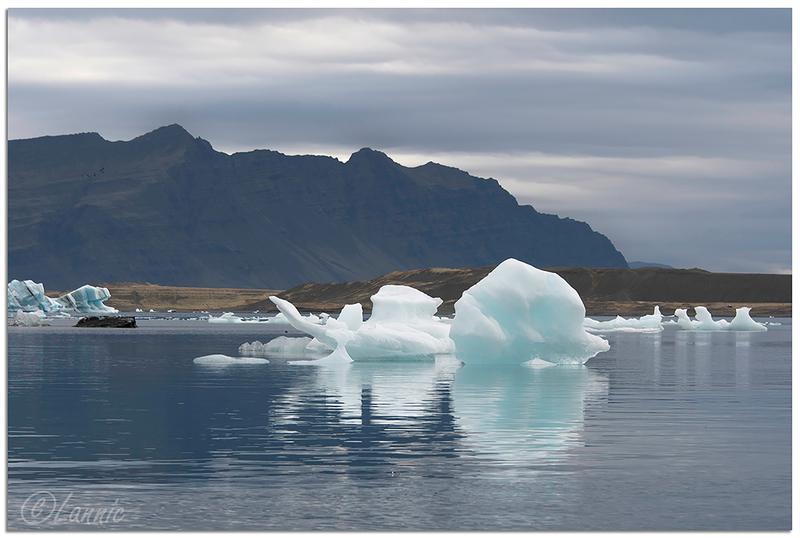 Islande (57) Jökulsárlón_6