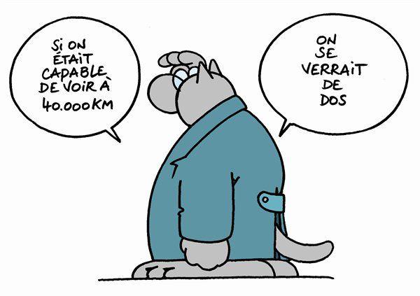 Chat Humoristique Dessin pensée du chat - tu connais la dernière ?