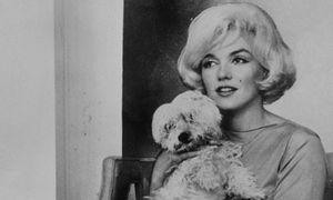ph_Marilyn_Monroe_001