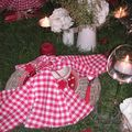 table picnic 048