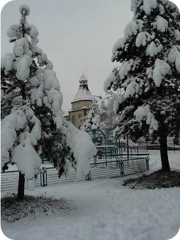 Quartier Drouot - Photo neige 42