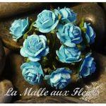 rose_bleu