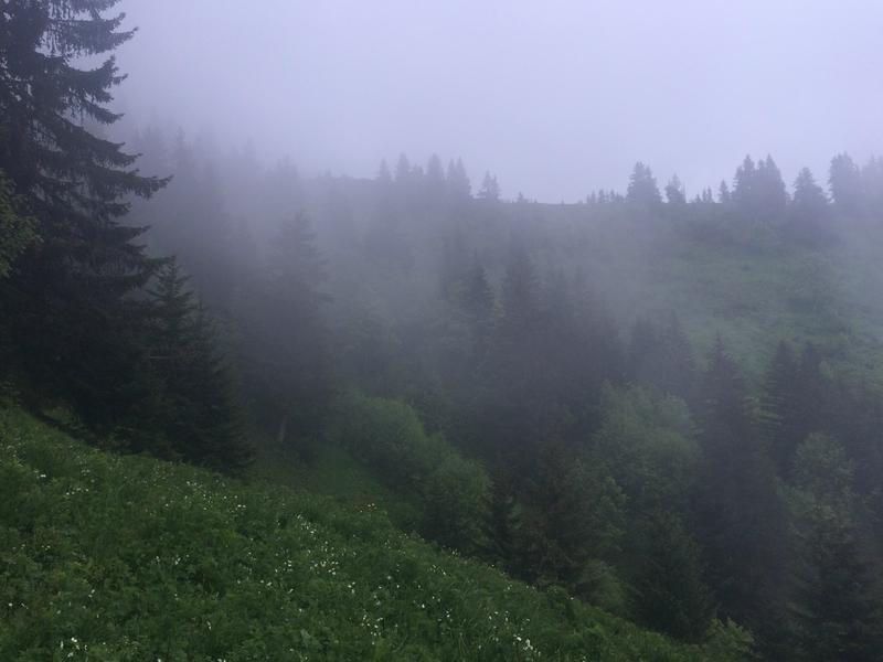 direction les crêtes brumeuses