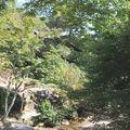 parc momijidami miyajima (10)