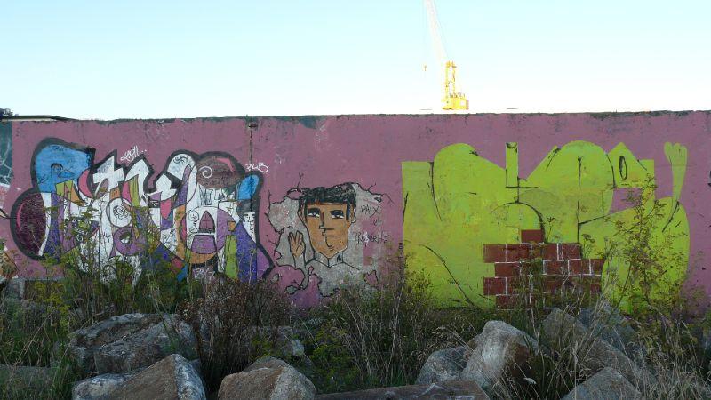 Goya & Frida