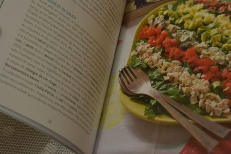 Soupe avgolemono (28)