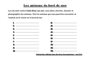 questionnaire_animaux