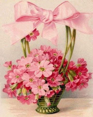 flrose