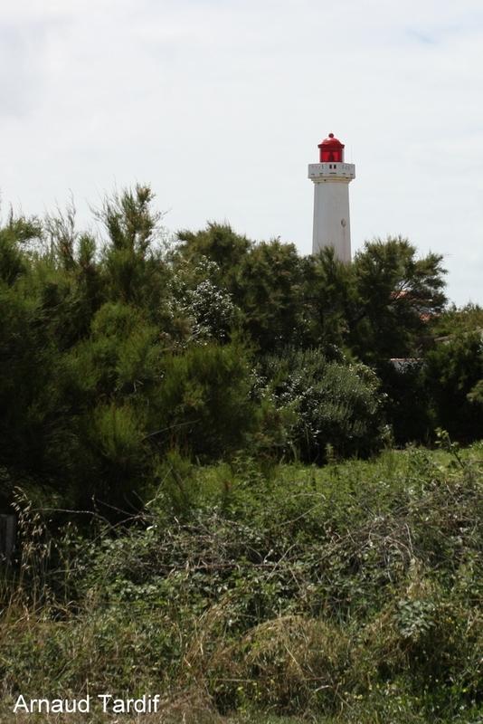 00635 Noirmoutier Juin 2020 - L'Ile d'Yeu - Le Phare des Corbeaux