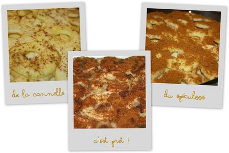 Pomme four speculoos3