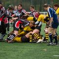 36IMG_0804T