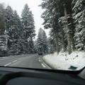 Nature sous la neige