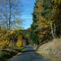 2009 10 28 Paysage d'automne (5)